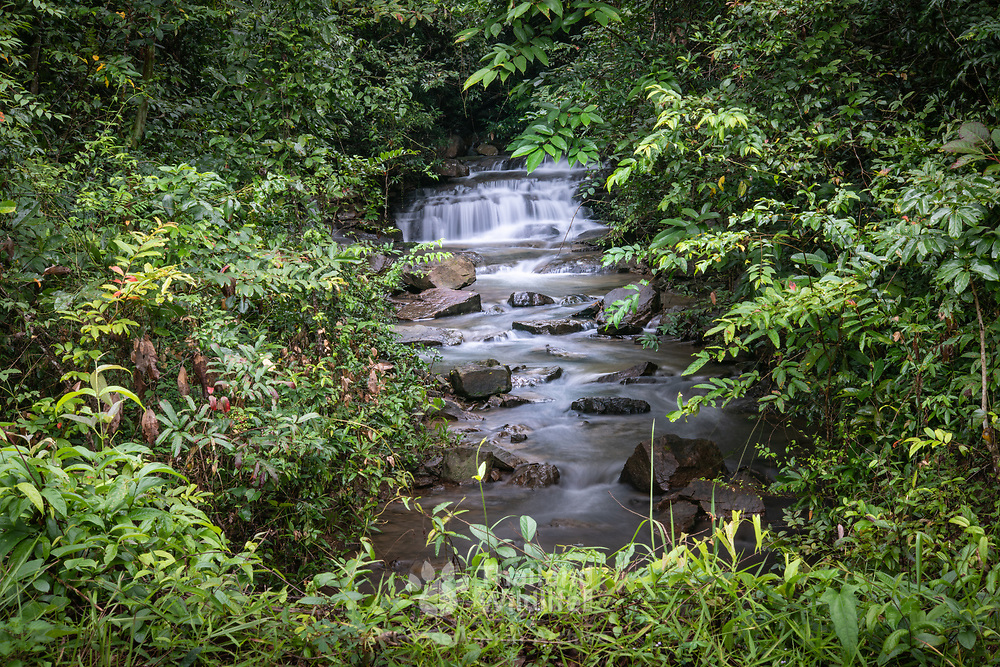 The higher reaches of the Huai Nam Yen (cool water creek) stream in Pang Sida National Park, Thailand.