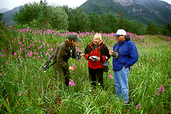 AK: Lake Clark National Park, Alaska, US Park Ranger tour, model released..Photo Copyright: Lee Foster, lee@fostertravel.com, www.fostertravel.com, (510) 549-2202.Image: akbear203