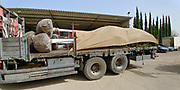 Mature trees loaded on a truck for transport and transplant