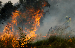 NEW SOUTH WALES, Nov. 11, 2019  Firefighters battle the flames during bushfires near Taree, New South Wales, Australia, Nov. 11, 2019..   A devastating start to the Australian bushfire season has prompted a state of emergency in the eastern state of New South Wales (NSW), with the country's largest city, Sydney bracing for ''catastrophic'' fire danger. .   On Monday, a state of emergency was declared for NSW, with exceptionally hot and windy conditions predicted for Tuesday, threatening to create an even bigger fire disaster than that which left three people dead last week. (Credit Image: © Bai Xuefei/Xinhua via ZUMA Wire)