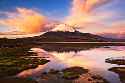 Lago Chungara with Volcano Parinacota in background, Chilean Andes, Chile, South America