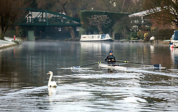 © Licensed to London News Pictures. 25/12/2018. Cambridge, UK. A woman rowing on the River Cam in Cambridge after a heavy frost on Christmas morning. Photo credit: Rob Pinney/LNP