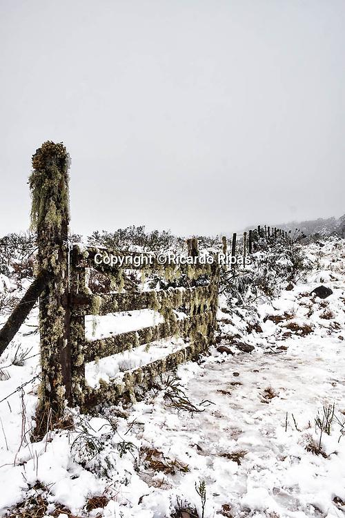 Cerca coberta de neve.  Urubici, Santa Catarina, Brasil. / <br /> Fence covered by snow.  Urubici, Santa Catarina, Brazil.