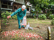06 JULY 2016 - BANGKOK, THAILAND: A man sprinkles flower petals on a grave in the cemetery at Bang Luang Mosque in the Thonburi section of Bangkok. It is traditional for people to clean the graves of family members after Eid. Eid al-Fitr is also called Feast of Breaking the Fast, the Sugar Feast, Bayram (Bajram), the Sweet Festival or Hari Raya Puasa and the Lesser Eid. It is an important Muslim religious holiday that marks the end of Ramadan, the Islamic holy month of fasting. Muslims are not allowed to fast on Eid. The holiday celebrates the conclusion of the 29 or 30 days of dawn-to-sunset fasting Muslims do during the month of Ramadan. Islam is the second largest religion in Thailand. Government sources say about 5% of Thais are Muslim, many in the Muslim community say the number is closer to 10%.        PHOTO BY JACK KURTZ