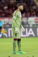 Salvatore Sirigu  -   Torino