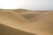 India, Rajasthan, Jaisalmer, the sand dunes of the Kanoi region (near the border with Pakistan)