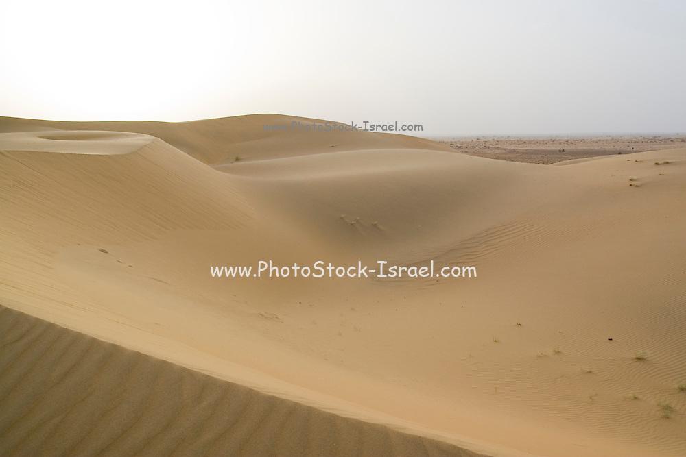 India, Rajasthan, Jaisalmer, the sand dunes of the Kanoi region (near the border with Pakistan)