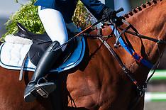Raeford, N.C- 2016 War Horse Event Series Championships - 11 Nov 2016