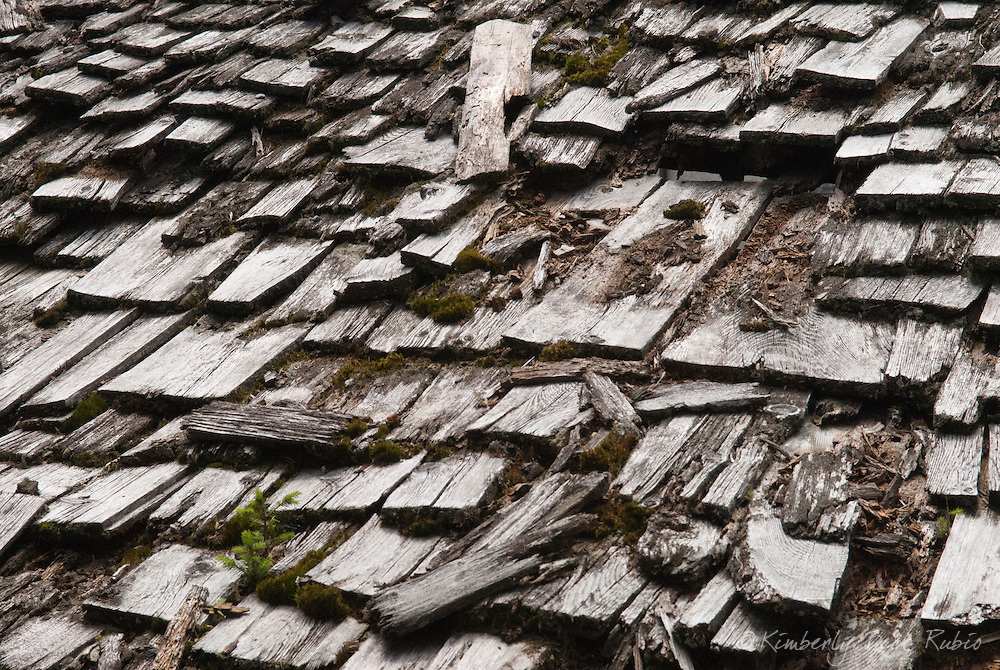 An old, wooden roof desperately in need of repair.