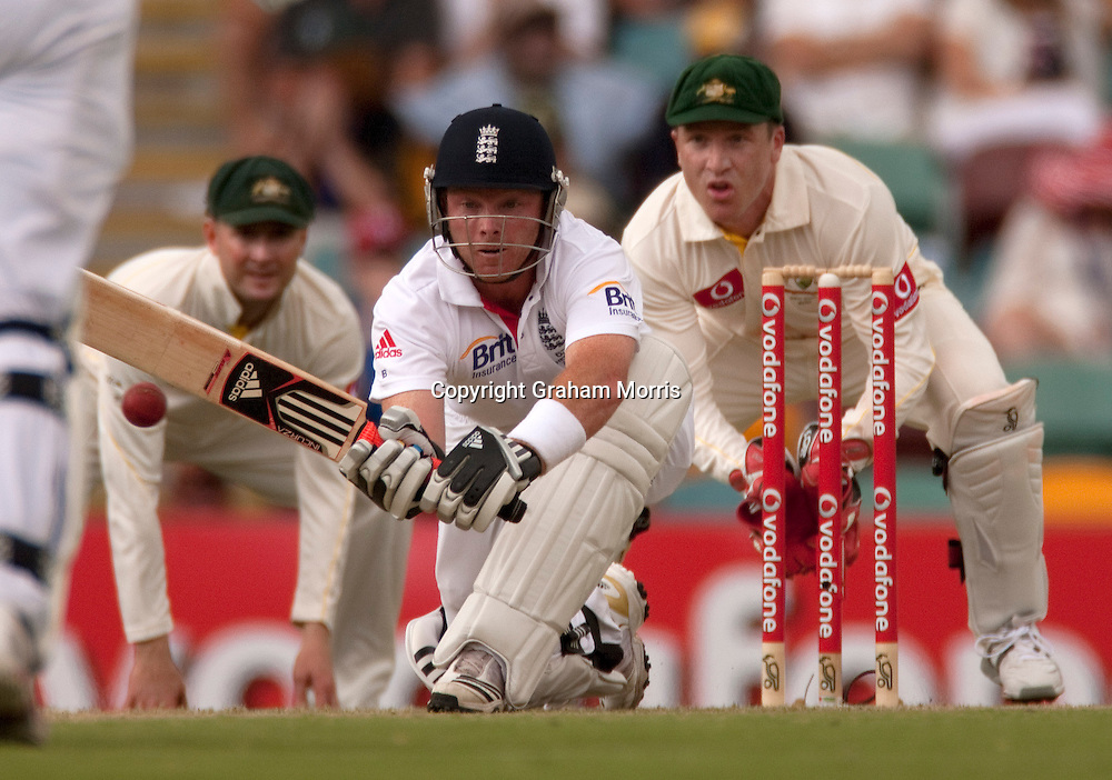 Ian Bell sweeps Xavier Doherty as wicket keeper Brad Haddin watches during the first Ashes Test Match between Australia and England at the Gabba, Brisbane. Photo: Graham Morris (Tel: +44(0)20 8969 4192 Email: sales@cricketpix.com) 25/11/10