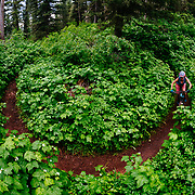 Heather Goodrich corners around raspberry bushes at the bottom of Ridge Trail off of Teton Pass.