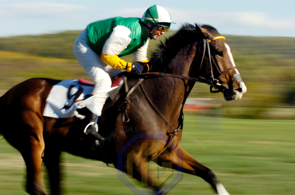 20 October 2007:  Jockey Michael Cooney of Ireland riding St. Emillion compete in the $20,000 Pleberstown Plate during the 70th running of the International Gold Cup Races on October 20, 2007 at the Great Meadow in The Plains, Va.  The race was won by Capital Peak (14) ridden by Lucy Horner of England with Toughkenamon (5) ridden by Scott Dobson of England and Luvyoudad (12) with Frederico de Paola of Italy aboard finishing 2nd and 3rd.