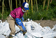 A Unilever Japan staffer ties up bags of mud dug up by coworkers at Dofukuin temple in Yagawahama, Ishinomaki, Miyagi Prefecture, Japan on 10 Sept. 2011. The entire area, including the temple, was flattened during the March 11 tsunami and around 35 Unilever and 4 BCCJ staff volunteered to do clean-up work. Photographer: ROBERT GILHOOLY