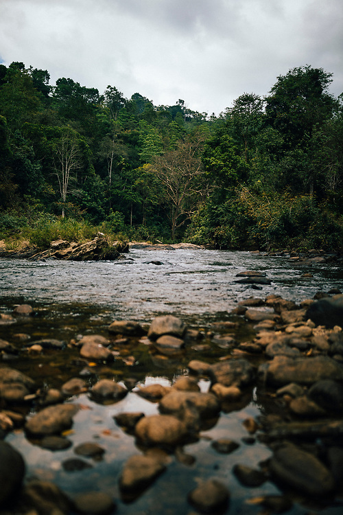 Kandy, Sri Lanka -- February 5, 2018: A river in the valley of the Knuckles Mountain Range.