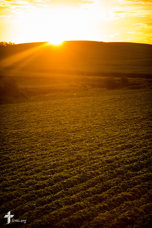 The sun rises over crop fields on Sunday, July 19, 2015, near Mission Central in Mapleton, Iowa. LCMS Communications/Erik M. Lunsford