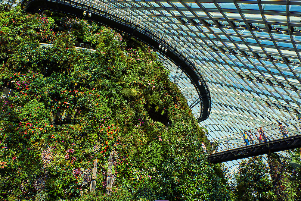 Singapour, Marina Bay, Garden By The Bay, Cloud forest, jardin botanique du Singapour 'vert'  // Singapore, Marina Bay, Garden By the bay, Cloud Forest, botanic garden, the highest artificial waterfall in the world