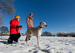 ©Paul Thompson Licensed to London News Pictures. 01/02/2015. Bradford West Yorkshire, UK. Georgina Tidswell and Nicholas Tidswell-Thompson (4) dog walking in the snow in Denholme, West Yorkshire. Photo credit : Paul Thompson/LNP