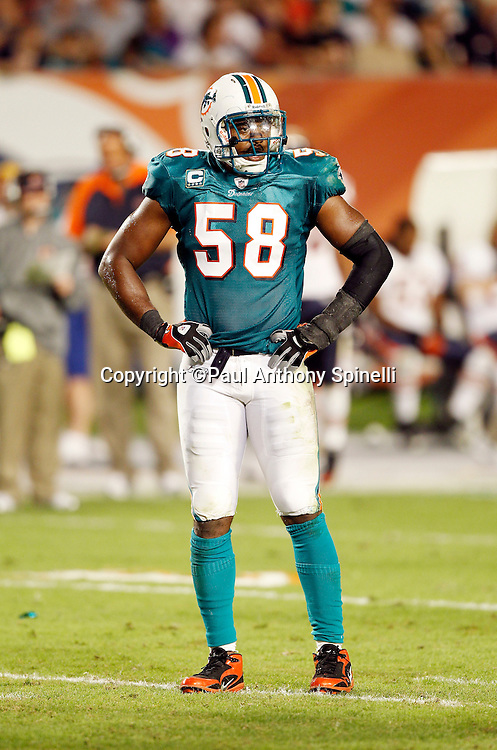 Miami Dolphins linebacker Karlos Dansby (58) looks on during the NFL week 11 football game against the Chicago Bears on Thursday, November 18, 2010 in Miami Gardens, Florida. The Bears won the game 16-0. (©Paul Anthony Spinelli)