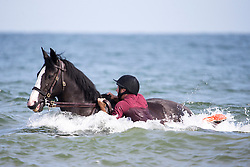 © Licensed to London News Pictures. 17/07/2017. Holkham UK. The Queen's Household Cavalry take their horses for a splash in the surf at Holkham beach this morning as part of their summer break & training at Bodney camp. Photo credit: Andrew McCaren/LNP