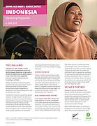2014 06 30 Tearsheet Oxfam New Zealand Indonesia gender factsheet