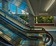 The Living Wall. 220 Portage Ave. Raymond SC Wan Architects; Winnipeg; Manitoba; Canada