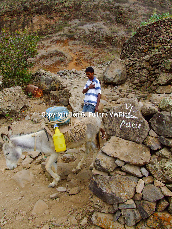 A boy and his donkey carry water from a spring in the Cova de Paul volcanic crater on Santo Antao, Republic of Cabo Verde, Africa.