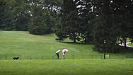 A rainy day at Cedar Hill in Central Park.