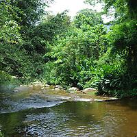 Rio del pueblo Chuao en el Edo. Aragua, Venezuela