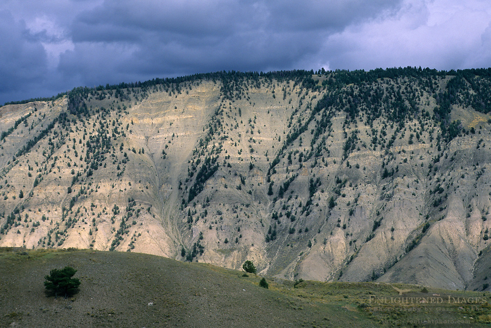 Canyon wall showing sediment layers Mammoth Hot Springs Region, Yellowstone National Park, WYOMING