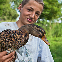 Young Ontario organic farmer, Ernst Pfenning, holding one of his free-range organically raised Rouen ducks.