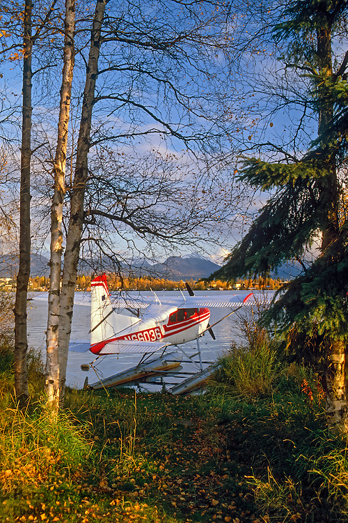 Cessna 180 on floats in Lake Spenard; Lake Hood Seaplane Base in Anchorage Alaska