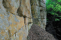 Wolfsschlucht / Gorge du Loup, Mullerthal trail, Mullerthal, Luxembourg