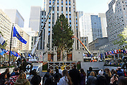 The Rockefeller Center Christmas Tree, from Oneonta, NY, is put into place, Saturday, Nov. 12, 2016, at Rockefeller Plaza in New York. The 84th Rockefeller Center Christmas Tree Lighting ceremony will take place on Wednesday, Nov. 30. (Photo by Diane Bondareff/AP Images for Tishman Speyer)