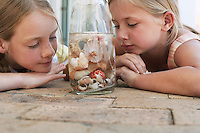 Two girls (7-9 10-12) looking at shells in jar close-up