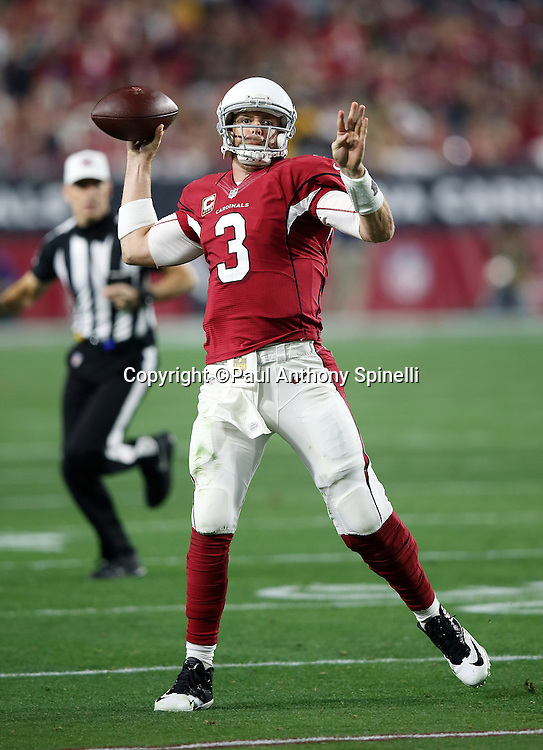Arizona Cardinals quarterback Carson Palmer (3) throws a deep pass to Arizona Cardinals wide receiver Larry Fitzgerald (11) in the fourth quarter during the NFL NFC Divisional round playoff football game against the Green Bay Packers on Saturday, Jan. 16, 2016 in Glendale, Ariz. The Cardinals won the game in overtime 26-20. (©Paul Anthony Spinelli)