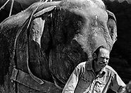 Rex Williams, Cirus Vargas Elephant Trainer