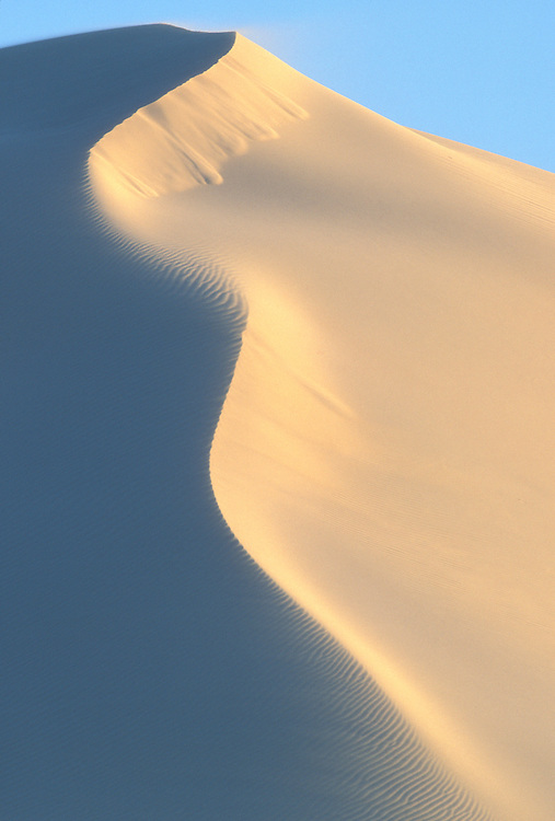 South Africa, DeHoop Nature Reserve, White sand dunes along Indian Ocean