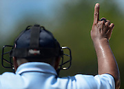 Umpire Henry Nache, of Silvis, Ill., displays the count during an ASA softball game at Green Valley Sports Complex in Moline on Wednesday, August 1, 2012.