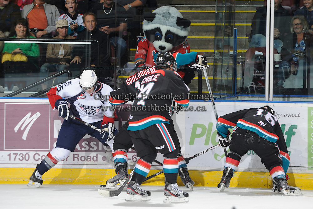 KELOWNA, CANADA, OCTOBER 5: Kelowna Rockets mascot, Rocky Racoon, gets a piece of the action against the Tri City Americans on October 5, 2011 at Prospera Place in Kelowna, British Columbia, Canada (Photo by Marissa Baecker/shootthebreeze.ca) *** Local Caption ***Rocky Racoon;