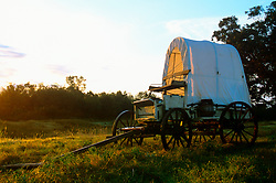 Covered wagon in a field at sunrise