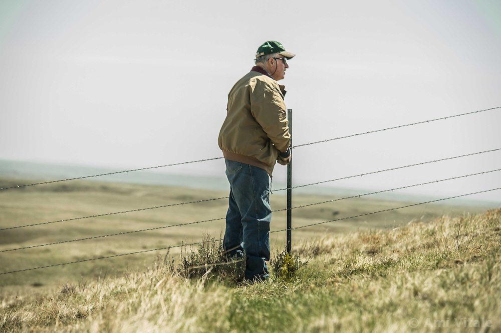 Bud Walsh works with The Nature Conservancy on his land in Eastern Montana across from the Matador &quot;grass Bank&quot; on May 9, 2013. The &ldquo;grass bank&quot; is an innovative way to leverage conservation gains, in which ranchers can graze their cattle at discounted rates on Conservancy land in exchange for improving conservation practices on their own &ldquo;home&rdquo; ranches. In 2002, the <br /> Conservancy began leasing parts of the ranch to neighboring ranchers who were suffering from several years of severe drought essentially offering the Matador&rsquo;s grass to neighboring ranches in exchange for their  participation in conservation efforts. Thirteen ranchers graze their cattle on the Matador and the grassbank has enabled TNC to leverage conservation on more than 225,000 additional acres of private land without the cost of purchase of the land or of easements. The grassbank has helped keep ranchers from &ldquo;busting sod,&rdquo; or  plowing up native grassland to farm it; helped remove obstacles to pronghorn antelope migration; improved habitat for the Greater Sage-Grouse and reduced the risk of Sage-Grouse colliding with fences; preserved prairie dog towns (thereby preserving an important food source for the endangered black-footed ferret) and prevented the spread of noxious weeds. (Photo By Ami Vitale)