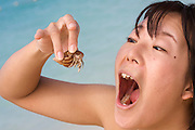 Miyako-jima. Maehama - Japan's most beautiful beach. Miyakojima Tokyu Resort. Young girl having fun with a hermit crab.