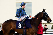 "Make Good ridden by David Probert and trained by David Dennis in the Read ""Group 1 Griff"" At Valuerater.Co.Uk Handicap race.  - Mandatory by-line: Ryan Hiscott/JMP - 01/05/2019 - HORSE RACING - Bath Racecourse - Bath, England - Wednesday 1 May 2019 Race Meeting"