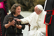 Vatican City jun 16th 2016, pope attends to a meeting with the participants in the Jubilee of the World of Travelling Shows at Paul VI audience hall . In the picture Pope Frnacis caresses a panther cub  - © PIERPAOLO SCAVUZZO