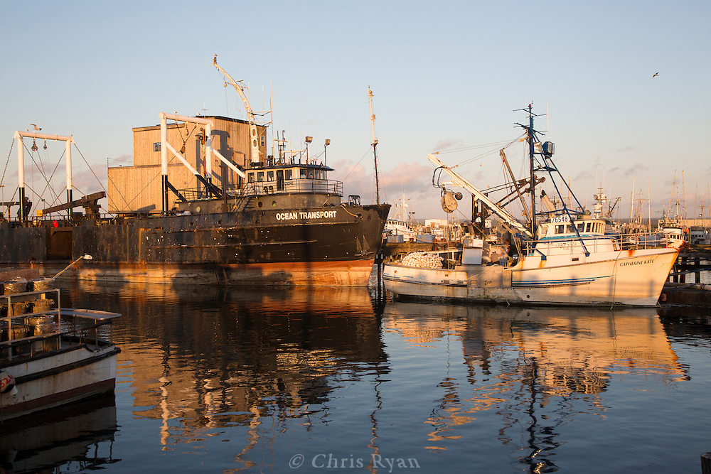 Fishing boats in the harbor in Portland, Washington