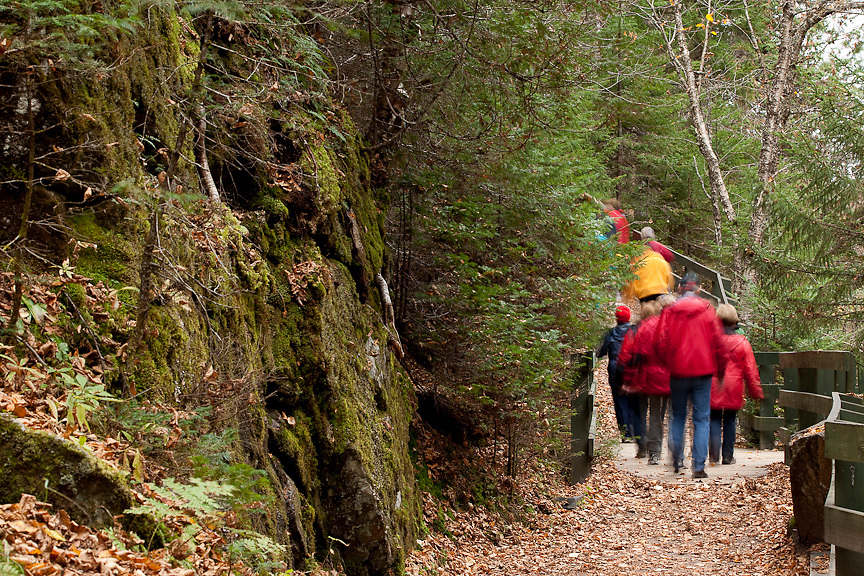 A tour group walks from Le Chute-du-Diable in Mont Tremblant National Park in Quebec, Canada. PHOTO BY TIM SNOW