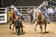 Steer wrestler Sid Hart makes his run during slack at the Bismarck Rodeo on Saturday, Feb. 3, 2018. This photo and more from most runs are available at Bobwire-S.com.