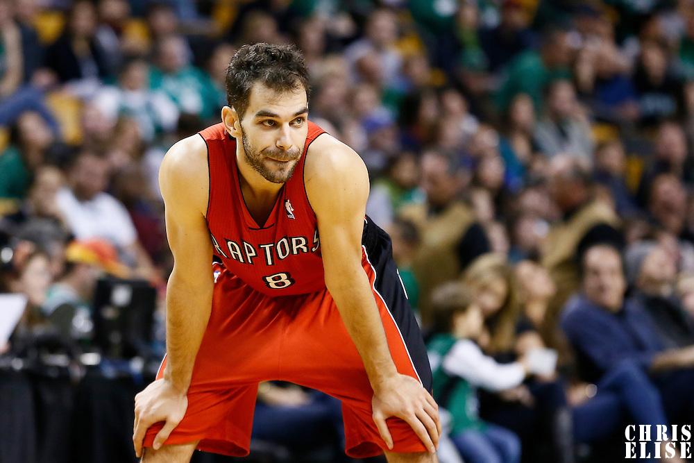 17 November 2012: Toronto Raptors point guard Jose Calderon (8) rests during the Boston Celtics 107-89 victory over the Toronto Raptors at the TD Garden, Boston, Massachusetts, USA.