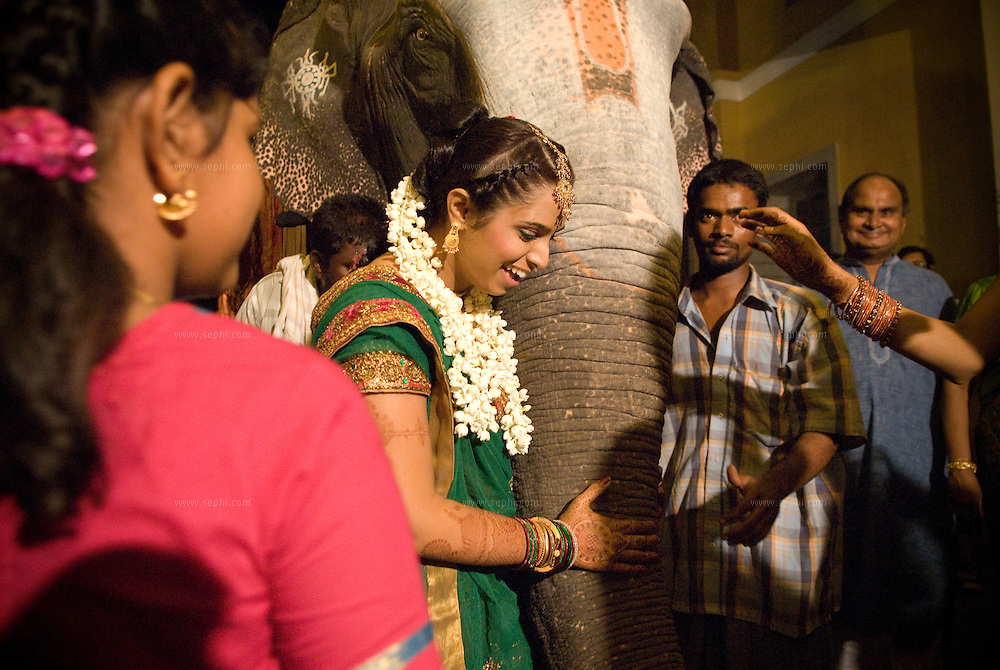 Bride thanking the elephant which brought the groom and baarat for a South Indian Traditional Tamil Brahmin Wedding