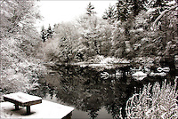 Gordon Pond in winter - The Norris Reservation Norwell, Massachusetts
